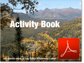 Activity Book for Log Cabin Wilderness Lodge
